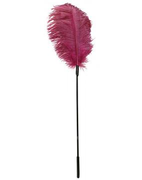 2206040000 Feder pink-Piórko