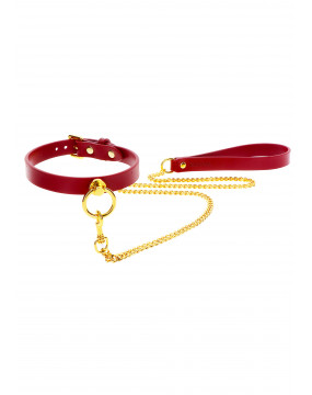 O-Ring Collar and Chain Leash